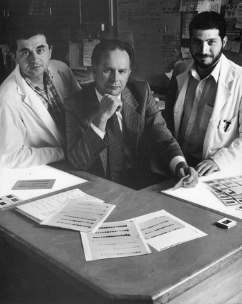 John Saltis (L) Alex Agrotis (R) with Alex Bobik (M) in the Cell Biology Laboratory
